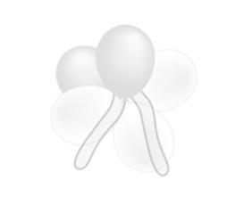 Mini ballonnen met t...